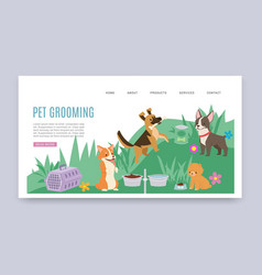 pet grooming service and healthcare products vector image