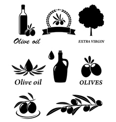 Set of olive icons vector