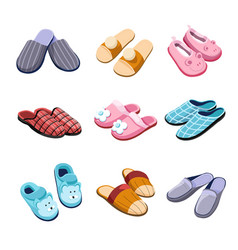 Slippers home footwear isolated pairs male female vector