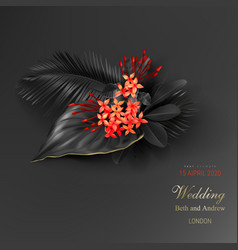 tropical black leaves and exotic red flower vector image