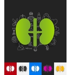 kidneys paper sticker with hand drawn elements vector image