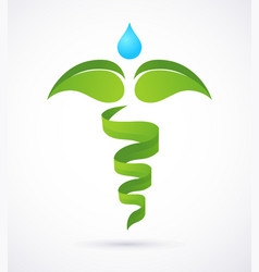 medical caduceus - alternative medicine green and vector image vector image