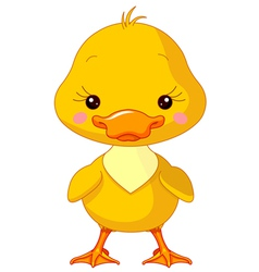 Farm animals Duck vector image vector image