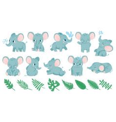 baelephants cute cartoon animal and tropical vector image