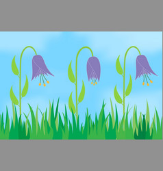 Flowers on the background of the sky vector