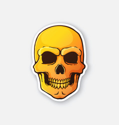Human skull with a terrible smile vector