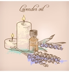 Lavender essential oil and candles vector