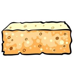 Sponge vector image vector image