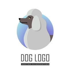 Dog logo of white standard poodle isolated vector