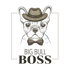 french bulldog boss dog t-shirt print design vector image
