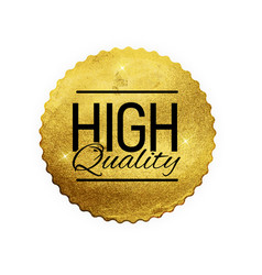 high quality shiny golden label luxury badge sig vector image