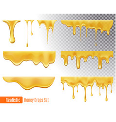 honey drops set vector image