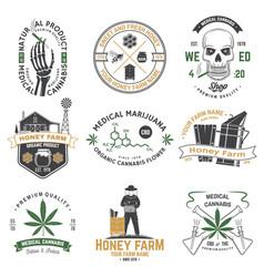 set honey bee farm and medical cannabis shop vector image