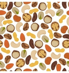 seamless pattern nuts vector image