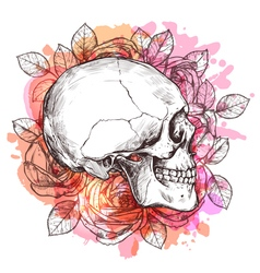 Skull And Flowers Hand Drawn Sketch vector image vector image