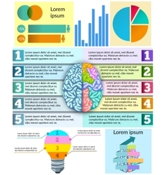 Creative Brain Infographic vector image