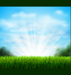 Fresh green glade with grass season background vector
