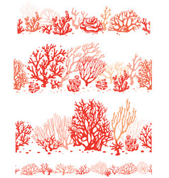 set corals border seamless patterns vector image