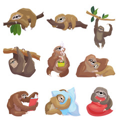 sloth icons set cartoon style vector image