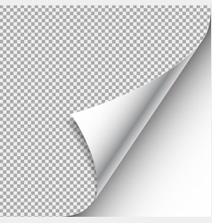 white curled paper corner with shadow vector image