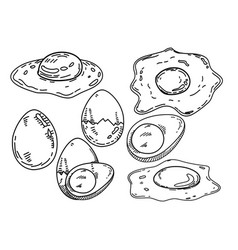 fried egg design with hand sketch vector image