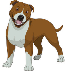 funny purebred staffordshire bull terrier vector image