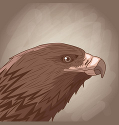 eagle drawing over brown background vector image vector image