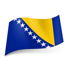 State flag of Bosnia and Herzegovina vector image
