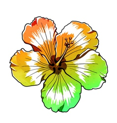 Abstract colorful hibiscus vector