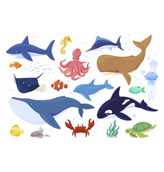 Collection sea animals flat vector