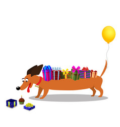 Dachshund with gifts on back and baloon on tail vector