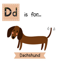 Letter d tracing dachshund vector