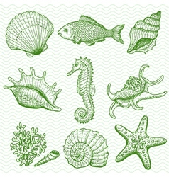 Sea collection Original hand drawn vector image vector image