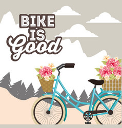 Bike repair and shop vector
