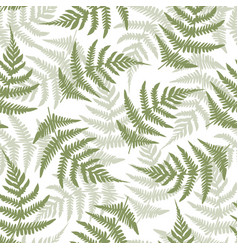 Fern leaves seamless pattern background vector