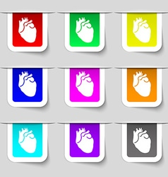 Human heart icon sign Set of multicolored modern vector image