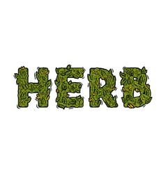 Lettering design weed inscription natural herb vector