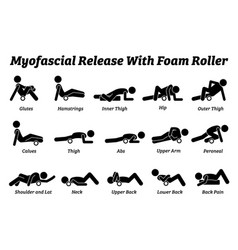 Myofascial release with foam roller physical vector