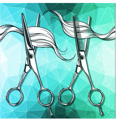 steel tools for hairdressing scissors vector image