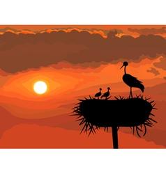 Storks nest vector