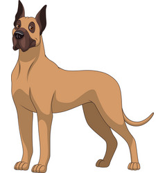 funny purebred german dog vector image