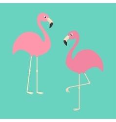 Two pink flamingo set exotic tropical bird zoo vector