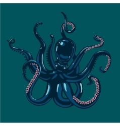 Colored octopus on isolated background vector image