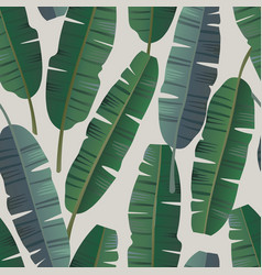 tropical palm banana leaves seamless pattern vector image