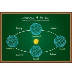 Seasons of the year on chalkboard vector