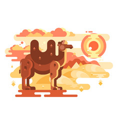 two-humped camel in desert vector image