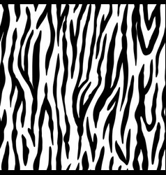 animal seamless pattern zebra texture mammals vector image