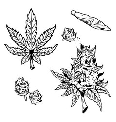 Cannabis marijuana set vector