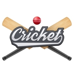 Cricket leather ball and wooden bats vector