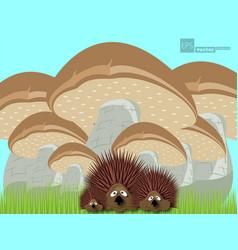 Different types mushrooms set vector